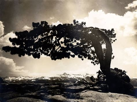 Philosophy of Science Portal: Will the real Ansel Adams